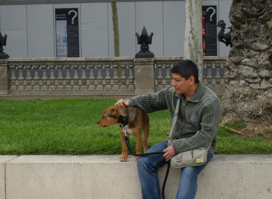 doggy-23